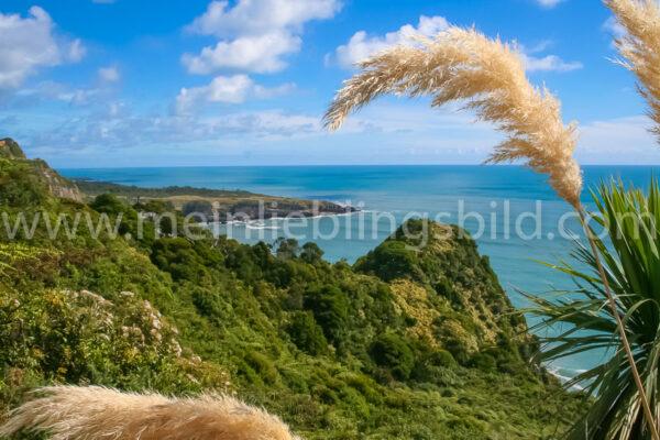 Meerblick Neuseeland Acryl, Alu Dibond, Leinwand